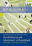 Grundsicherung und Arbeitsmarkt in Deutschland: Lebenslagen - Instrumente - Wirkungen (IAB-Bibliothek)
