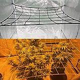 Blanketswarm Gartennetz, Pflanzenstütznetz, elastisches Ranknetz, Pflanzennetz für Garten, Innenbereich, Kletterpflanze, schützt Pflanzenwachstum, Platz 84 x 81 cm, 36 Gitter