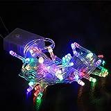 LED-String 5 m Gypsophila Outdoor-Weihnachtsbaum Licht Lichterketten dekorativer Ferienpark angelegte Garten,Farbe