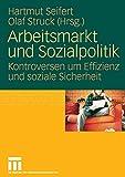 Arbeitsmarkt Und Sozialpolitik: Kontroversen um Effizienz und soziale Sicherheit (German Edition)