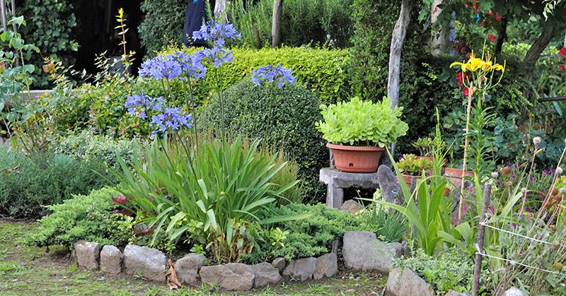 So wird aus dem nutzgarten ein ziergarten 40 plus portal - Kleiner nutzgarten ...